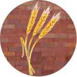 wheat stalks in front of bricks